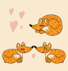 cute love fox vector image