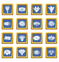 Detailed flower icons set blue square vector