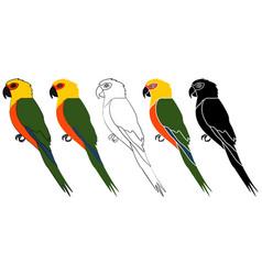 Jandaia bird in profile view vector