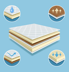 Orthopedic mattress layers material mattress vector