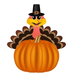 Turkey in Peligrin hat on Thanksgiving Day looks vector image