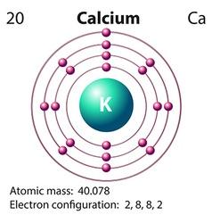 Diagram representation of the element clacium vector image