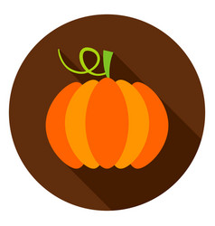 pumpkin circle icon vector image
