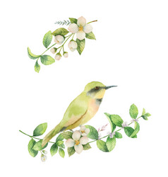 watercolor wreath with bird and flowers vector image vector image