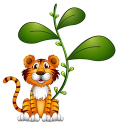 A tiger beside a vine vector image vector image