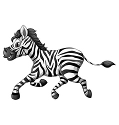 A zebra running vector image vector image