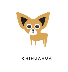 Cartoon chihuahua puppy character isolated on vector