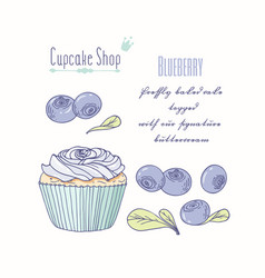 hand drawn cupcake blueberry flavor vector image