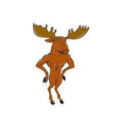 Moose Standing Hands Akimbo Cartoon vector