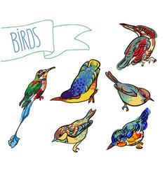 sketch of birdset vector image