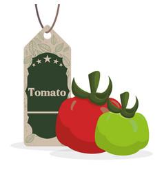 Tomato vegetables shopping sale offer vector