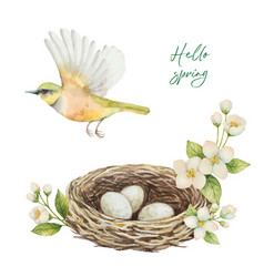 watercolor wreath with bird nest with eggs vector image vector image