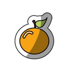 colorful orange fruit icon stock vector image