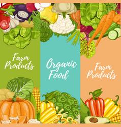 organic farm food flyers set vector image vector image