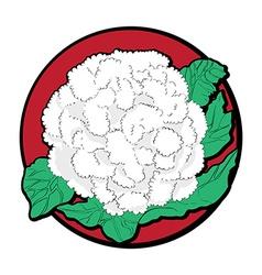 cauliflower clip art vector image