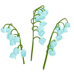 drawing bell flowers vector image