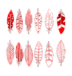 Feathers with abstract drawings vector