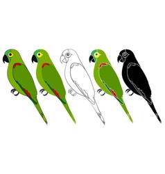 Papagaio verdadeiro bird in profile view vector