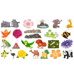 set animal and plant vector image