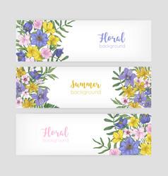 set floral banner templates with elegant vector image