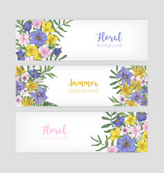 Set of floral banner templates with elegant vector