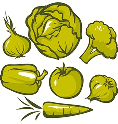 set of green vegetable vector image