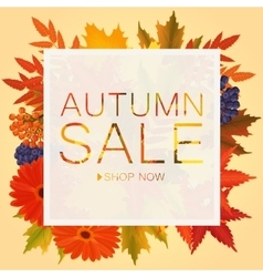 Autumn sale discount banner Poster with golden vector image vector image