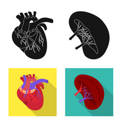 Biology and scientific icon vector