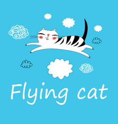 funny flying cat lovers vector image