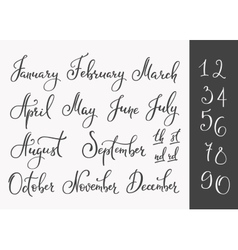 Lettering months names set vector