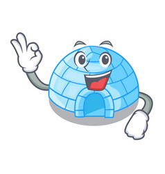 Okay cartoon dome igloo ice house snow vector