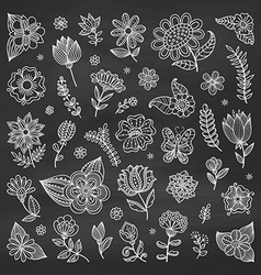 set floral elements vector image