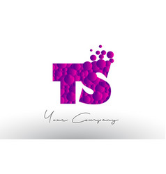 ts t s dots letter logo with purple bubbles vector image