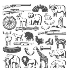 wild animals and hunting equipment icons vector image