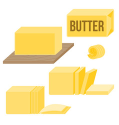 butter in various types vector image