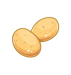 Couple potatoes vector image vector image