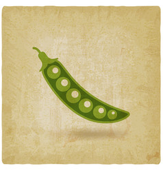 green pea pod old background vector image