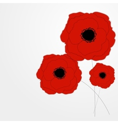 Red Poppies Flower Background vector image