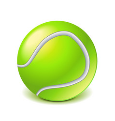 tennis ball isolated on white vector image vector image