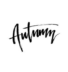 autumn brush lettering vector image
