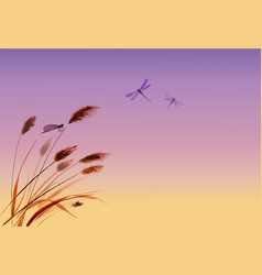 leaves of grass dragonflies and sunrise sky vector image