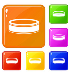 Puck icons set color vector
