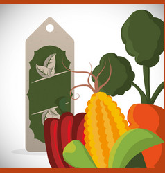 sale vegetables fresh food style vector image