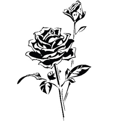Stylized silhouette of rose vector image