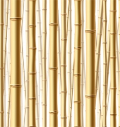 bamboo forest background vector image vector image