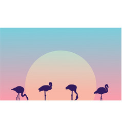 Beauty landscape at morning with flamingo vector