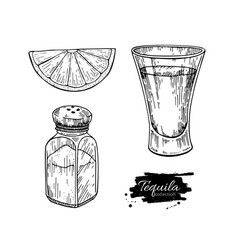 tequila shot glass with lime and salt shaker vector image vector image