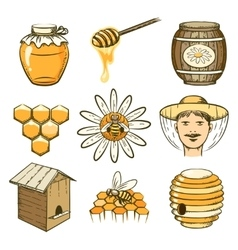 hand drawn beekeeping honey and bee icons vector image vector image