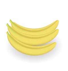 fresh bananas vector image