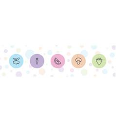 5 vegetarian icons vector